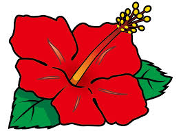 8月7日(ハナの日)の翌日って事で、ハナのやめどきについて徹底討論!